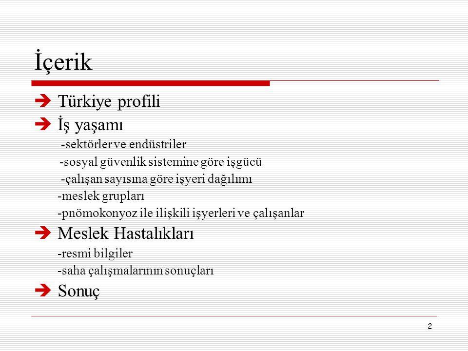 İçerik Türkiye profili İş yaşamı Meslek Hastalıkları Sonuç