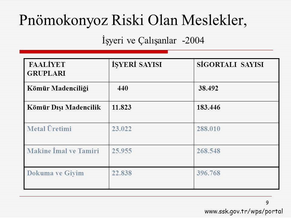 Pnömokonyoz Riski Olan Meslekler, İşyeri ve Çalışanlar -2004