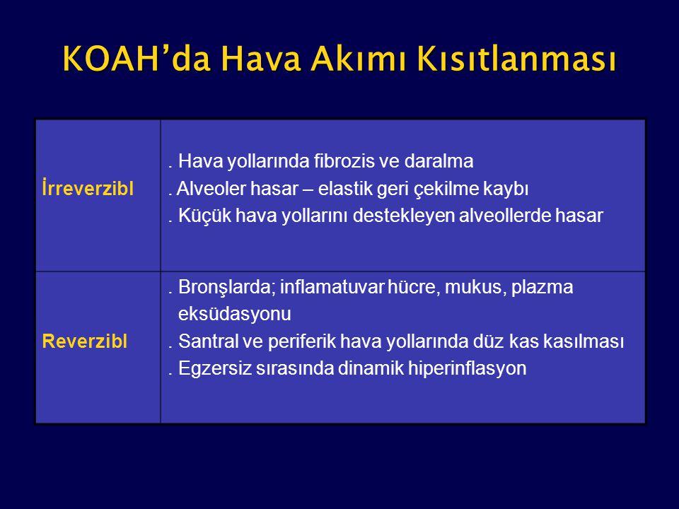 KOAH'da Hava Akımı Kısıtlanması