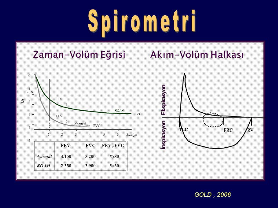 Spirometri Zaman-Volüm Eğrisi Akım-Volüm Halkası GOLD , 2006