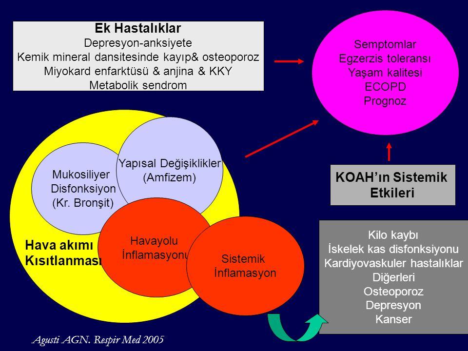 Ek Hastalıklar KOAH'ın Sistemik Etkileri