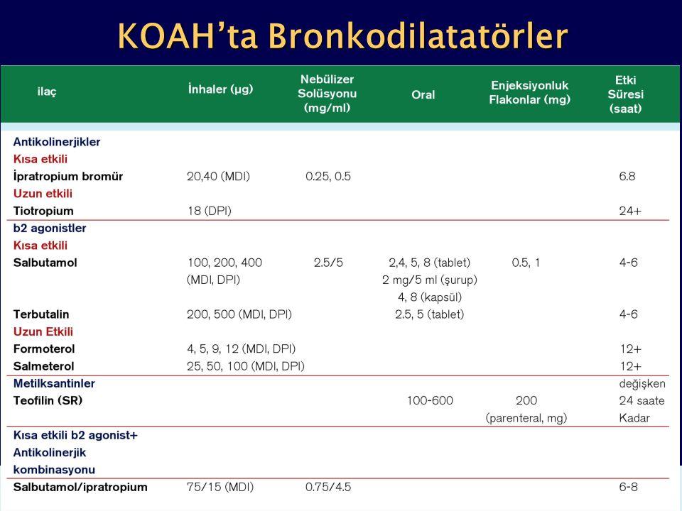 KOAH'ta Bronkodilatatörler