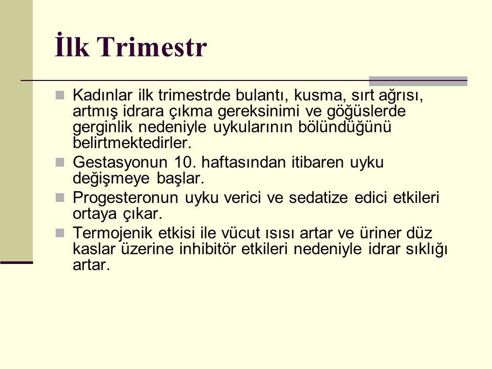 İlk Trimestr