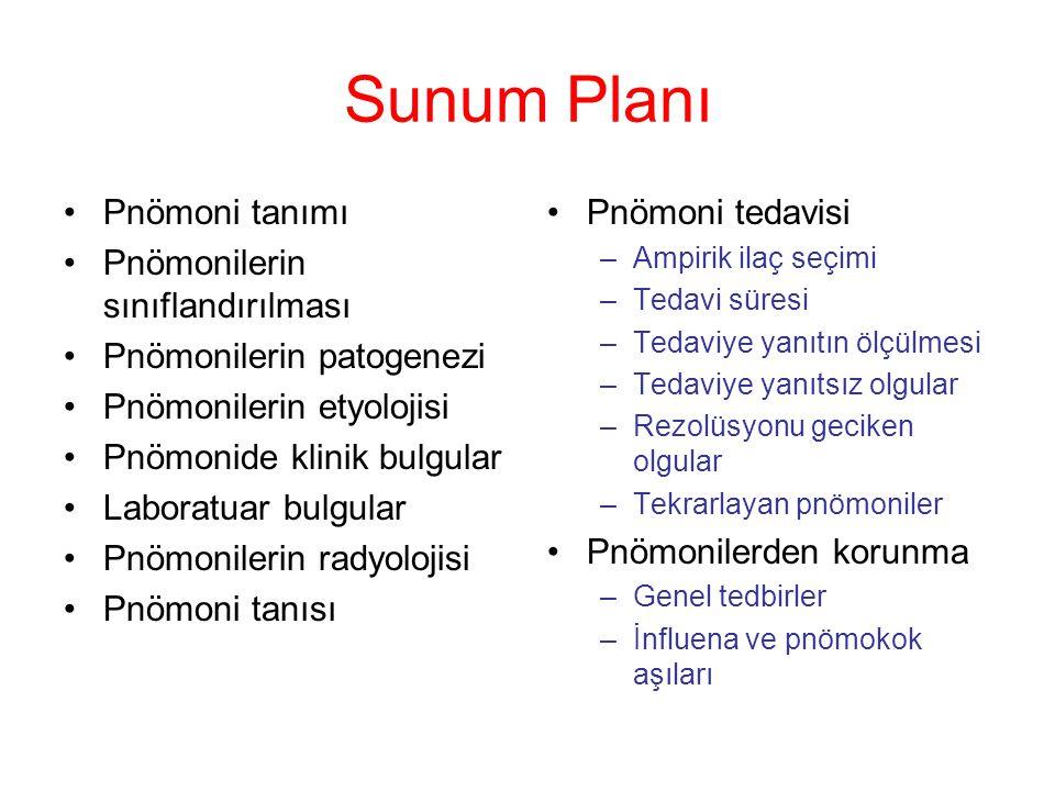 Sunum Planı Pnömoni tanımı Pnömonilerin sınıflandırılması