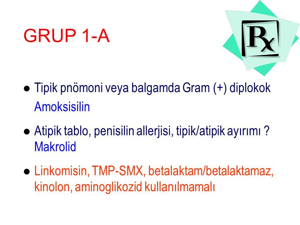 GRUP 1-A Tipik pnömoni veya balgamda Gram (+) diplokok Amoksisilin