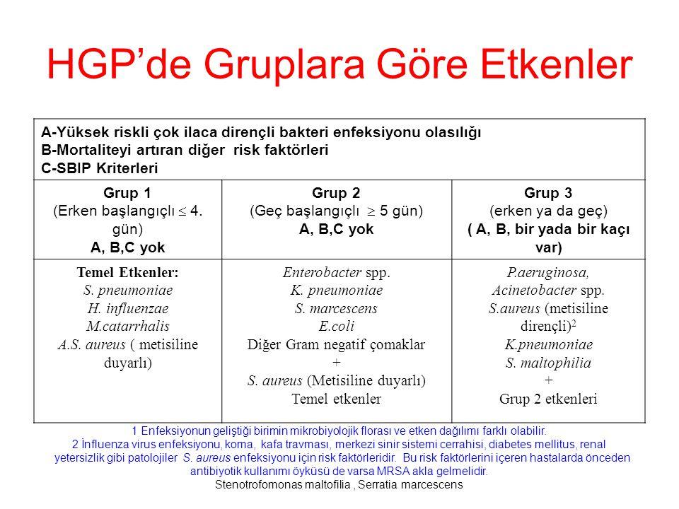 HGP'de Gruplara Göre Etkenler
