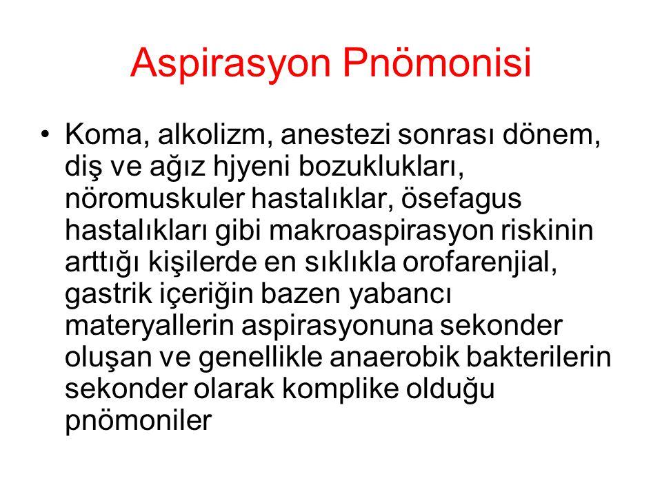 Aspirasyon Pnömonisi