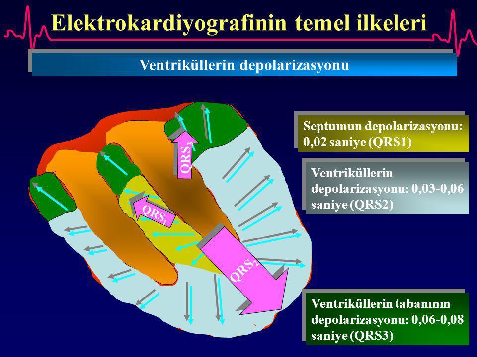 Elektrokardiyografinin temel ilkeleri Ventriküllerin depolarizasyonu