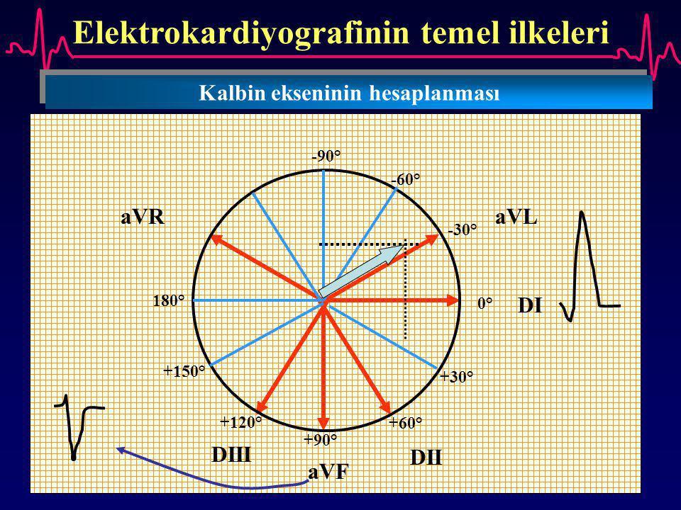 Elektrokardiyografinin temel ilkeleri Kalbin ekseninin hesaplanması