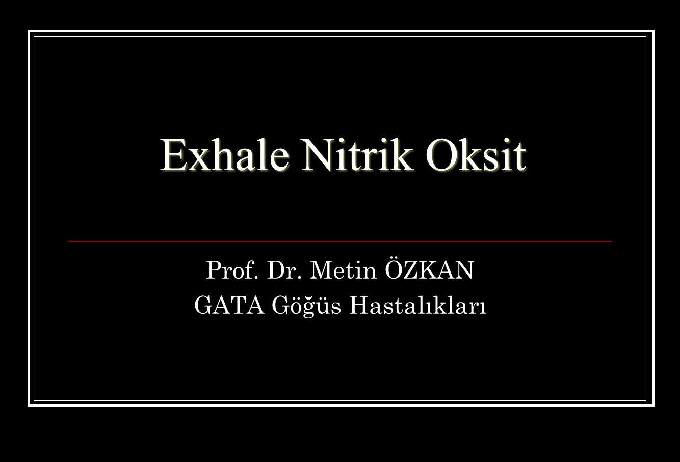 Prof. Dr. Metin ÖZKAN GATA Göğüs Hastalıkları