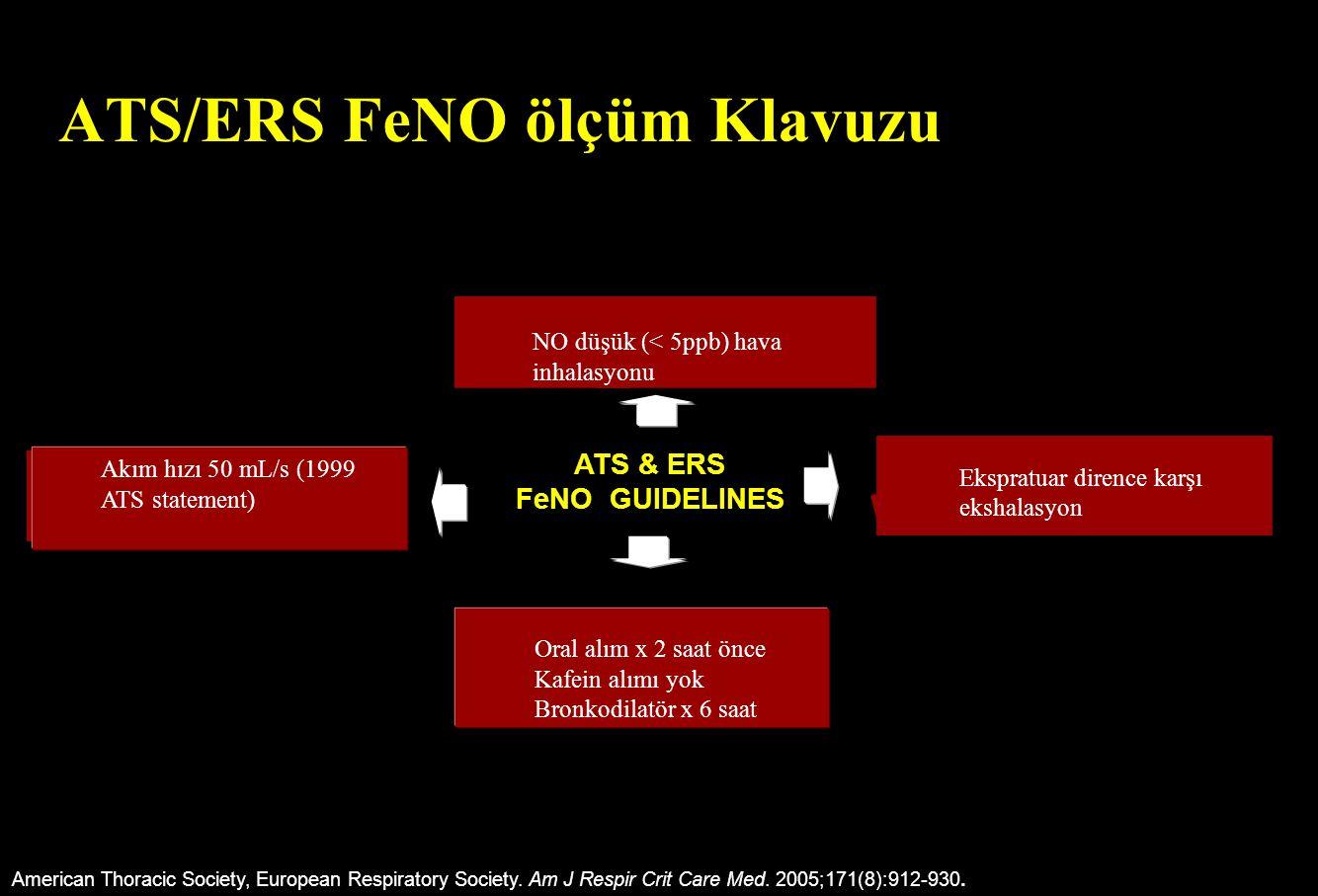 ATS/ERS FeNO ölçüm Klavuzu