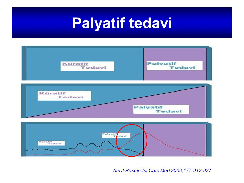Palyatif tedavi Ölüm Am J Respir Crit Care Med 2008;177: 912-927