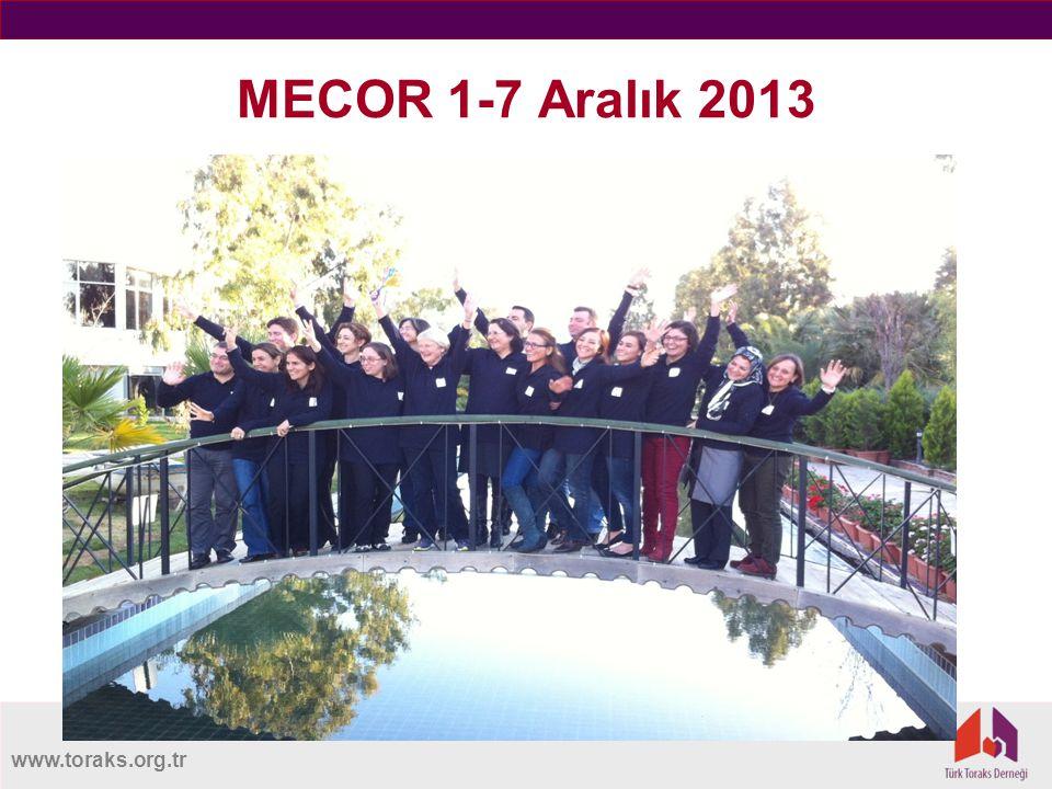 MECOR 1-7 Aralık 2013