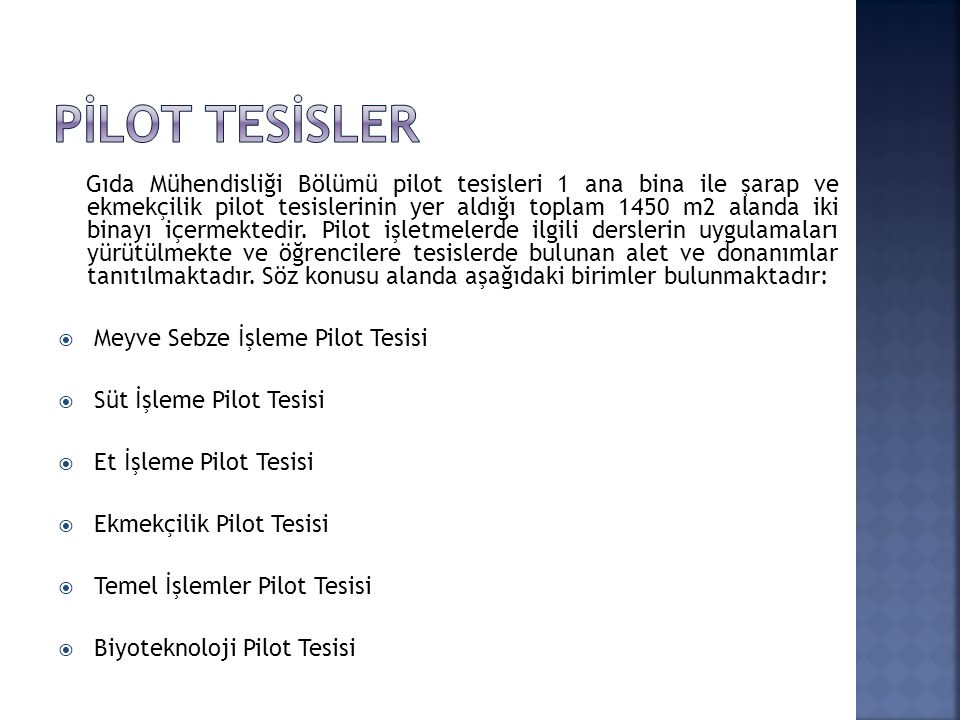 PİLOT TESİSLER