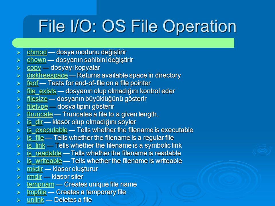 File I/O: OS File Operation