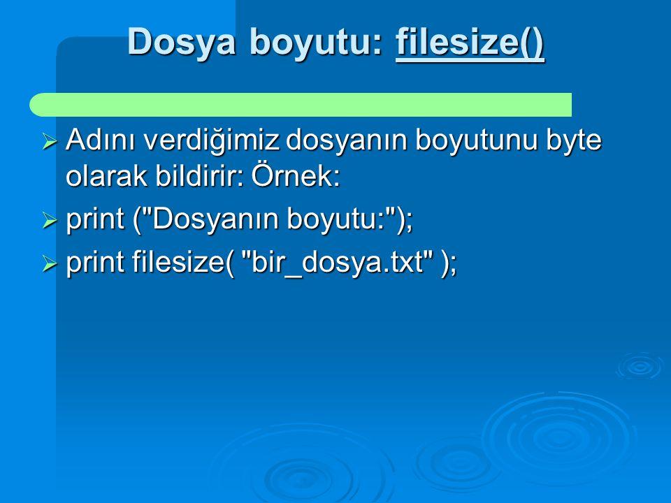 Dosya boyutu: filesize()