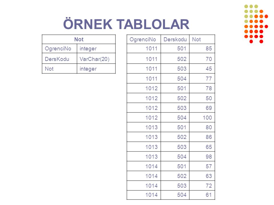 ÖRNEK TABLOLAR Not OgrenciNo Derskodu integer 1011 501 85 DersKodu