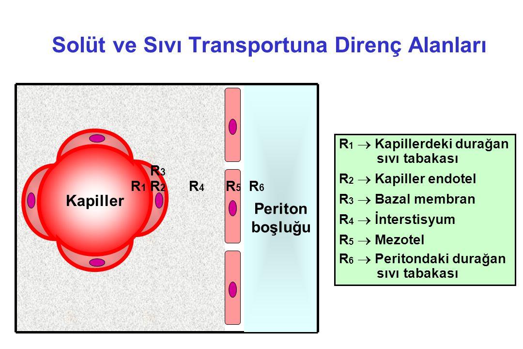 Solüt ve Sıvı Transportuna Direnç Alanları