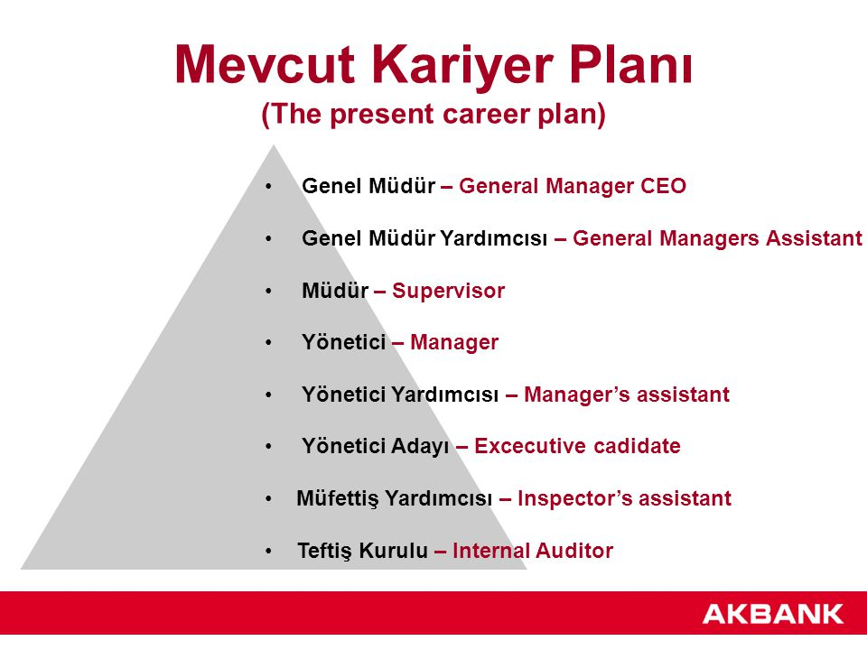Mevcut Kariyer Planı (The present career plan)