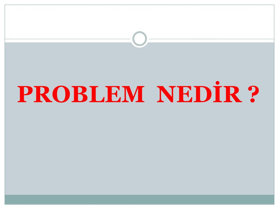 PROBLEM NEDİR