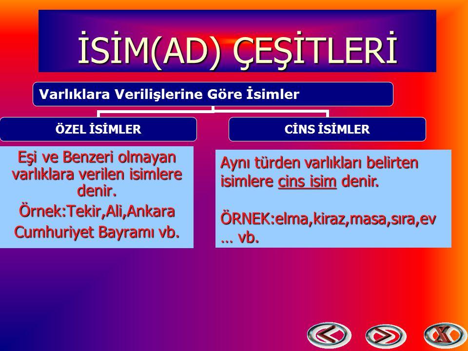 İSİM(AD) ÇEŞİTLERİ Eşi ve Benzeri olmayan varlıklara verilen isimlere denir. Örnek:Tekir,Ali,Ankara.