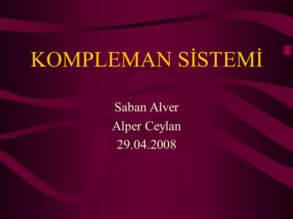 Saban Alver Alper Ceylan 29.04.2008