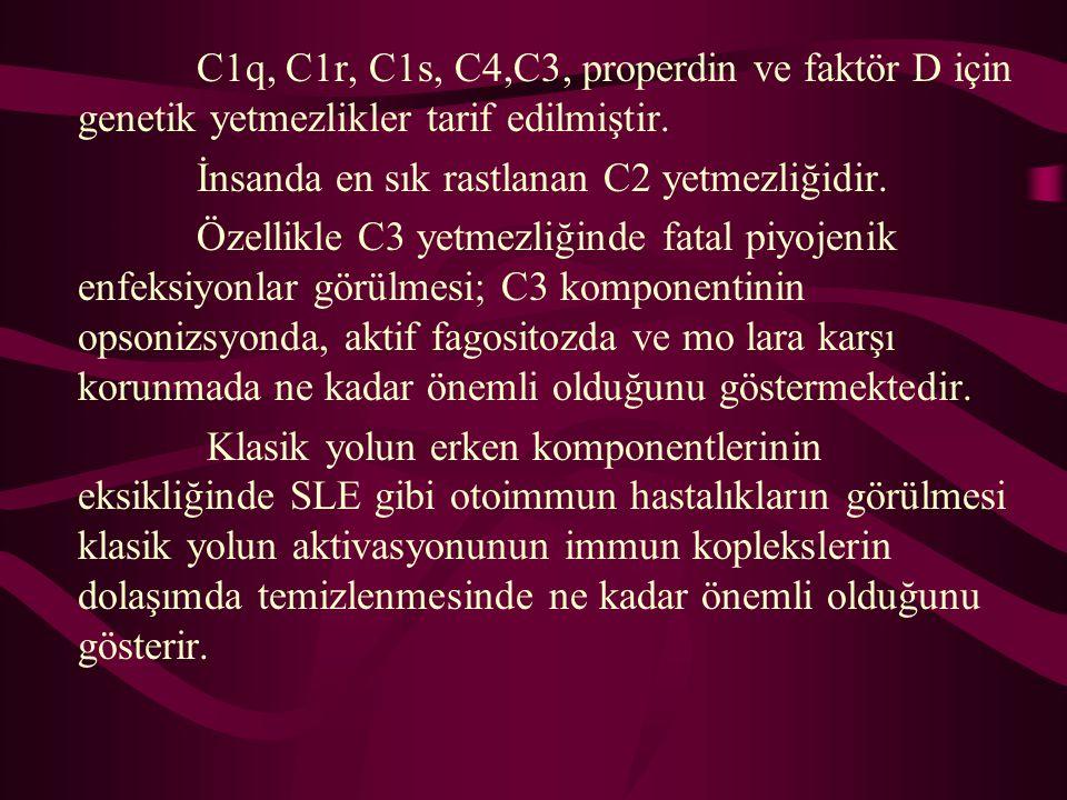 C1q, C1r, C1s, C4,C3, properdin ve faktör D için genetik yetmezlikler tarif edilmiştir.