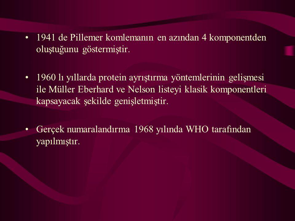 1941 de Pillemer komlemanın en azından 4 komponentden oluştuğunu göstermiştir.