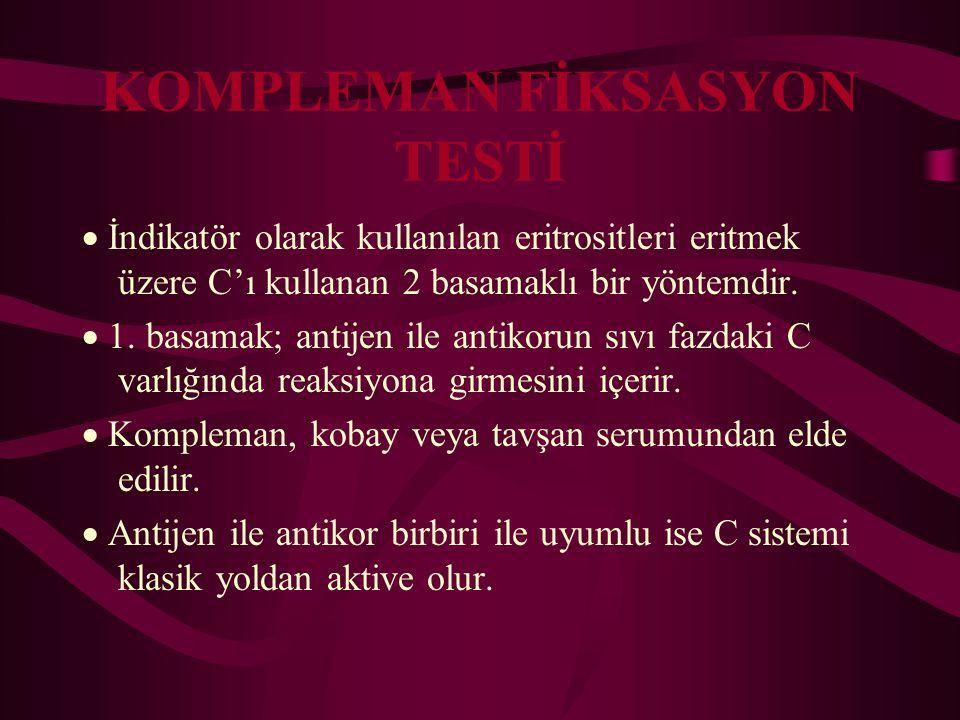 KOMPLEMAN FİKSASYON TESTİ