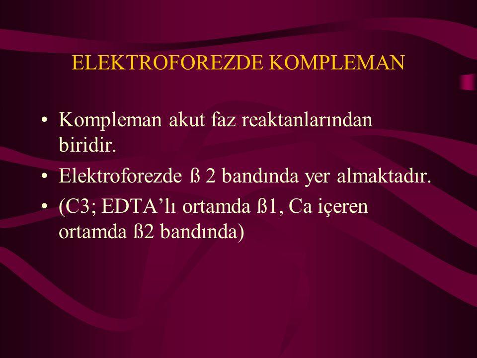 ELEKTROFOREZDE KOMPLEMAN