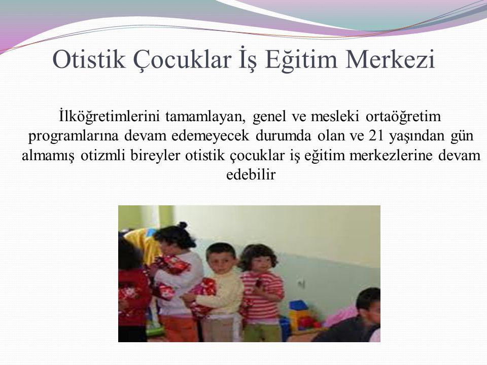 Otistik Çocuklar İş Eğitim Merkezi