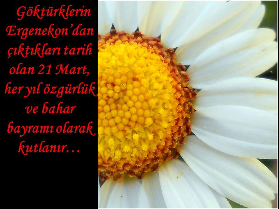Göktürklerin Ergenekon'dan çıktıkları tarih olan 21 Mart, her yıl özgürlük ve bahar bayramı olarak kutlanır…