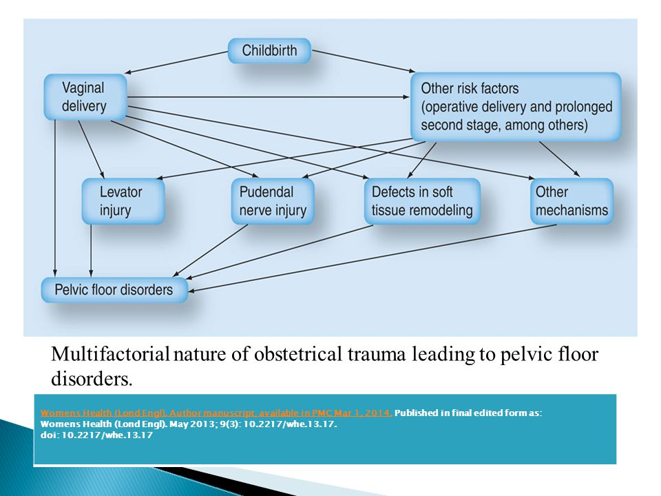 Multifactorial nature of obstetrical trauma leading to pelvic floor disorders.