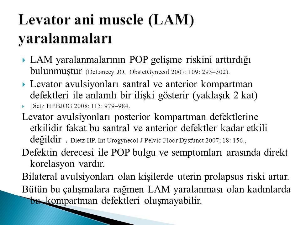 Levator ani muscle (LAM) yaralanmaları