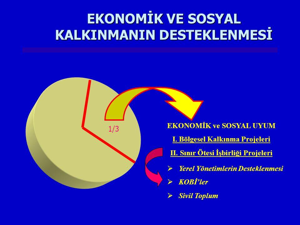 EKONOMİK VE SOSYAL KALKINMANIN DESTEKLENMESİ