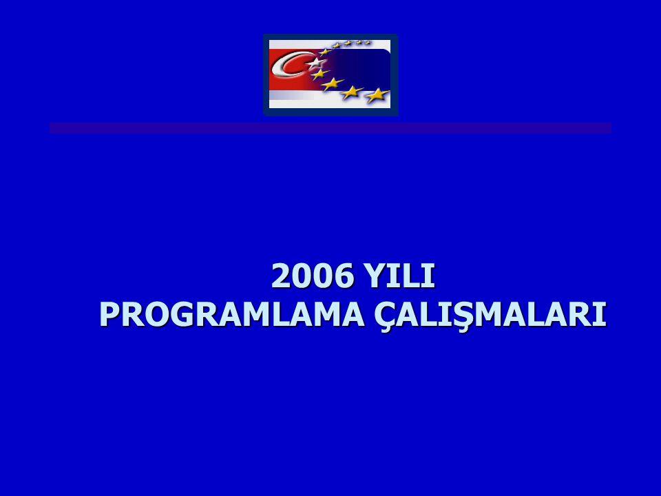 2006 YILI PROGRAMLAMA ÇALIŞMALARI