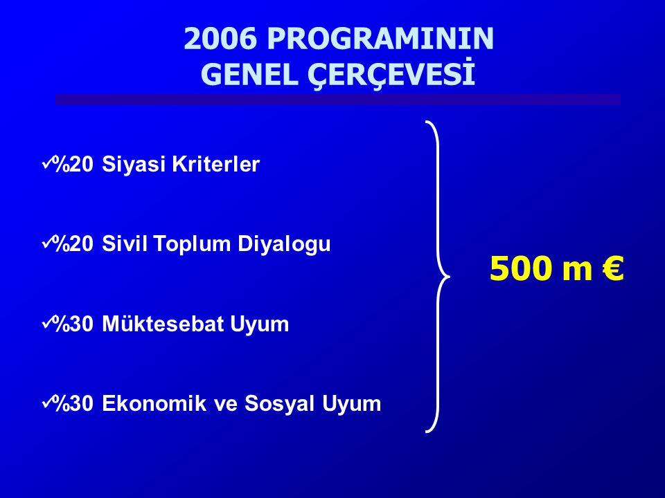 2006 PROGRAMININ GENEL ÇERÇEVESİ
