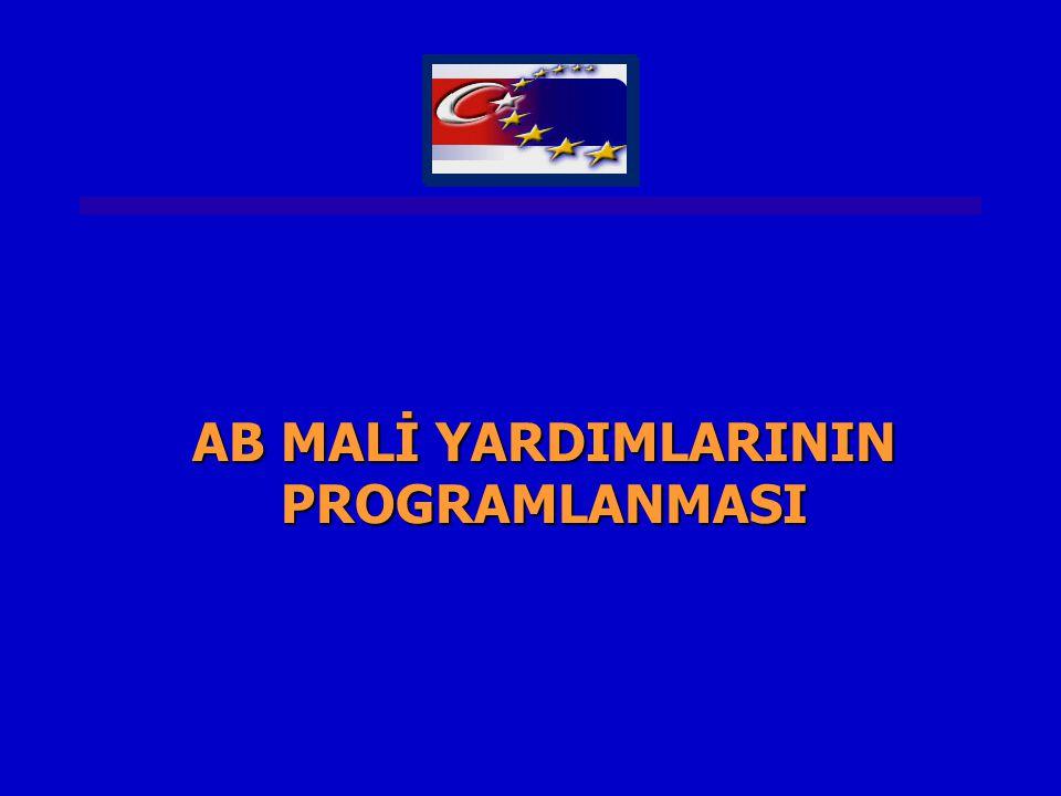 AB MALİ YARDIMLARININ PROGRAMLANMASI
