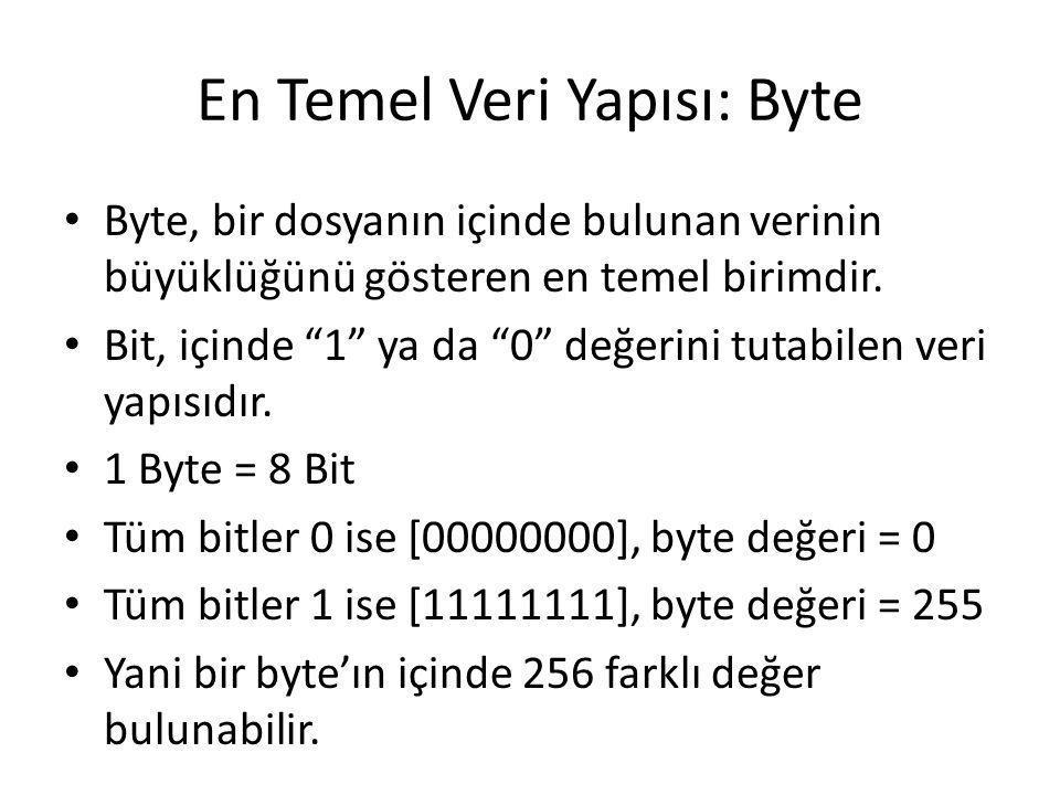 En Temel Veri Yapısı: Byte