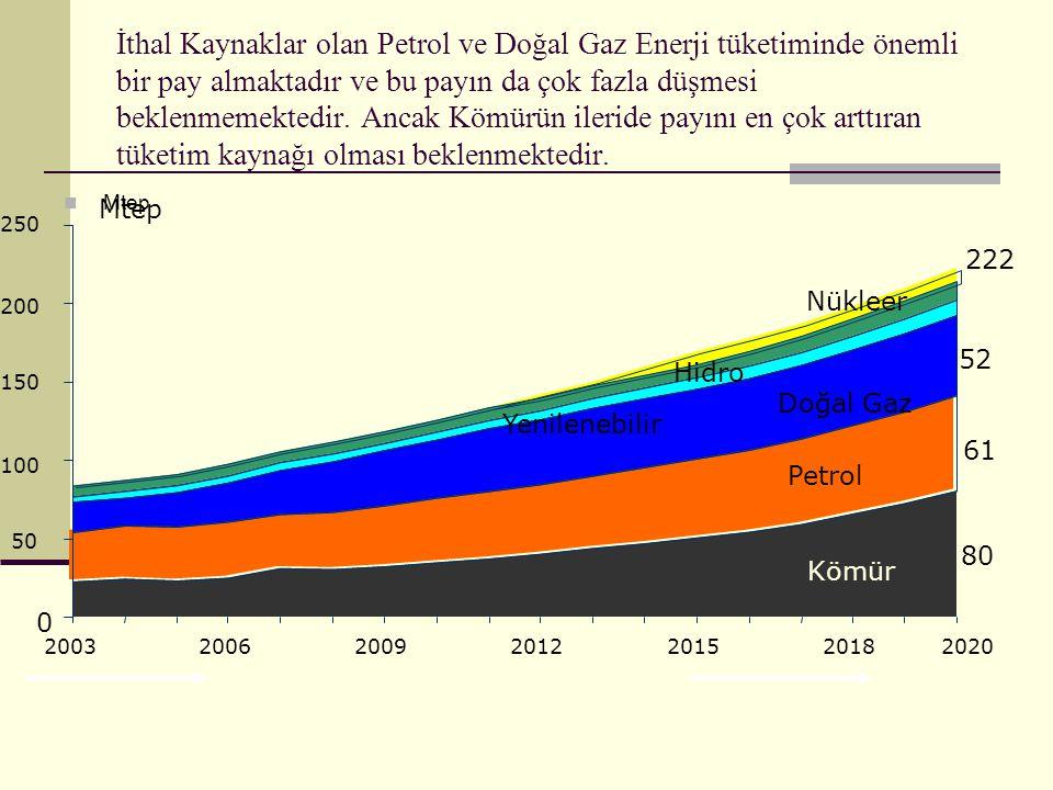 İthal Kaynaklar olan Petrol ve Doğal Gaz Enerji tüketiminde önemli bir pay almaktadır ve bu payın da çok fazla düşmesi beklenmemektedir. Ancak Kömürün ileride payını en çok arttıran tüketim kaynağı olması beklenmektedir.