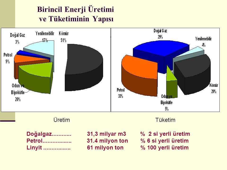 Birincil Enerji Üretimi ve Tüketiminin Yapısı