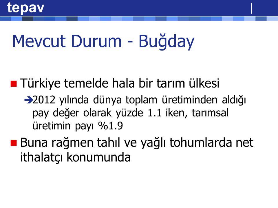 Mevcut Durum - Buğday Türkiye temelde hala bir tarım ülkesi