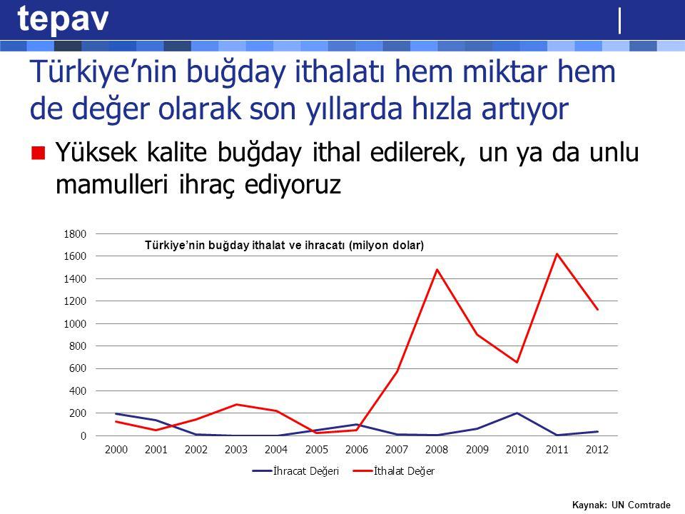 Türkiye'nin buğday ithalatı hem miktar hem de değer olarak son yıllarda hızla artıyor