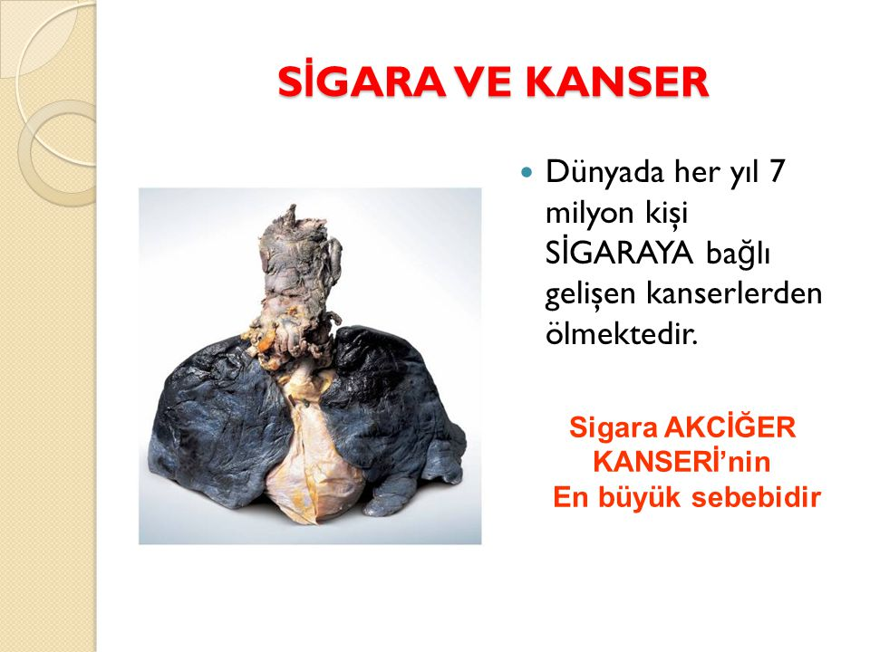 SİGARA VE KANSER Sigara AKCİĞER. KANSERİ'nin. En büyük sebebidir.