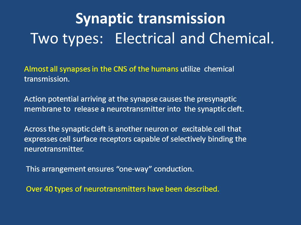 Synaptic transmission Two types: Electrical and Chemical.