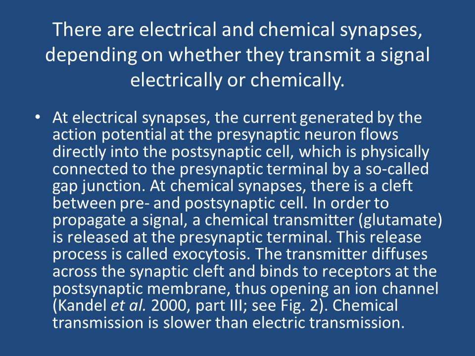 There are electrical and chemical synapses, depending on whether they transmit a signal electrically or chemically.
