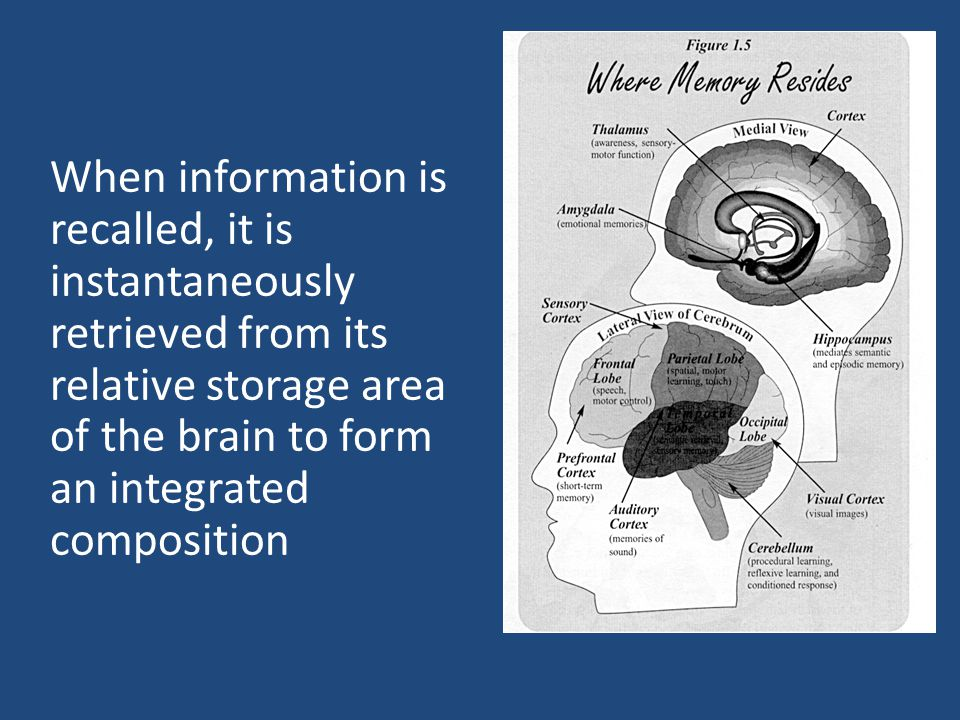When information is recalled, it is instantaneously retrieved from its relative storage area of the brain to form an integrated composition