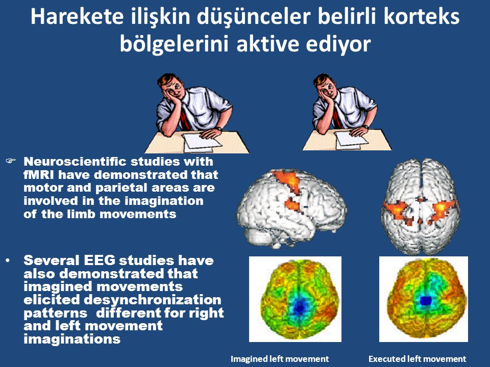 Harekete ilişkin düşünceler belirli korteks bölgelerini aktive ediyor