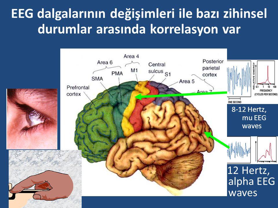 EEG dalgalarının değişimleri ile bazı zihinsel durumlar arasında korrelasyon var