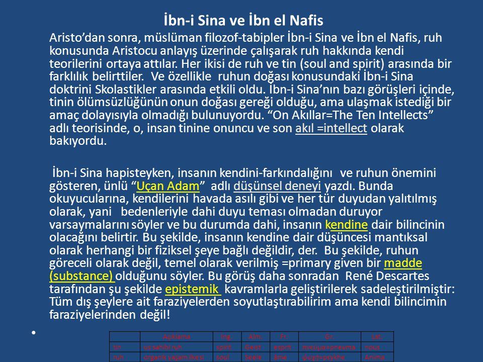İbn-i Sina ve İbn el Nafis